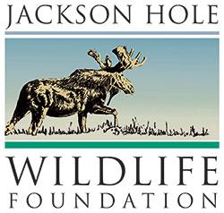 Jackson Hole Wildlife Foundation